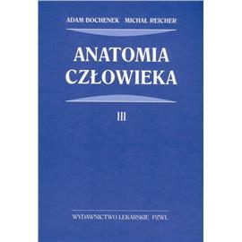 ANATOMIA 3 BOCHENEK