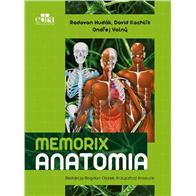 MEMORIX ANATOMIA POLSKO-ANGIELSKO-ŁACIŃSKIE MIANOW