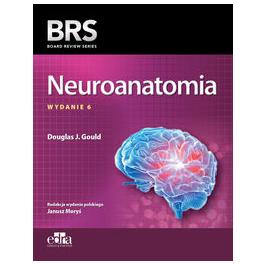 NEUROANATOMIA BRS